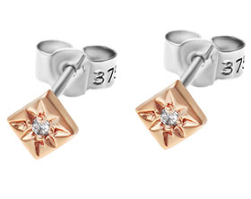 9-carat-rose-and-white-gold-earrings-with-a-star-set-diamond-2238_1.jpg